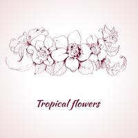 Tropical flower sketch vector