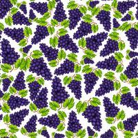 Seamless grapes fruit pattern