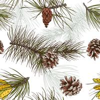 Pine branches colored seamless pattern