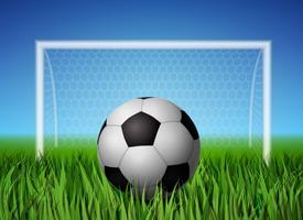 Pallone da calcio e campo in erba