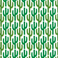 cactus pattern  on white background