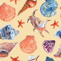 Marine shell seamless pattern