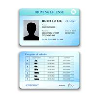 Driver License Illustration