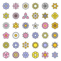 flower and floral  vector