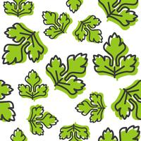 vegetable seamless pattern, coriander or celery leaf outline