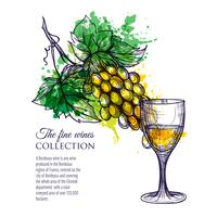 Copo De Vinho Branco Com Ramo De Uvas