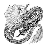 Sketch Dragon Illustration vector
