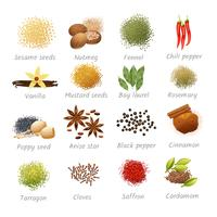 Icons Set Of Spices