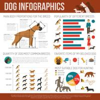 Dog infographics set