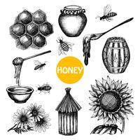 Honey set black hand drawn doodle