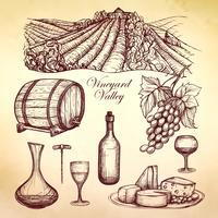 Coleção de esboço de vinho