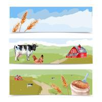 Set di banner di fattoria