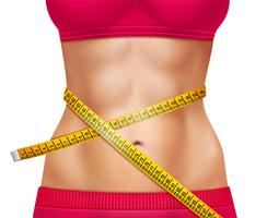 Female Athletic Waistline 3D Illustration
