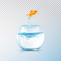 Composição de aquário de peixe a ferver