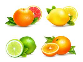 Citrus Fruits 4 Realistic Icons Set