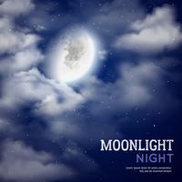 Moonlight night illustration