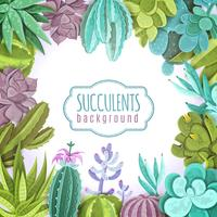 Succulents Background Illustration  vector