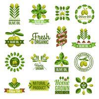 Conjunto de etiquetas de aceite de oliva natural orgánico