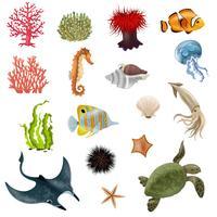 Conjunto de iconos de dibujos animados de vida marina