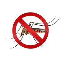 Mosquito stop sign vector