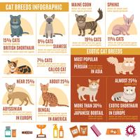 Cats infographics set