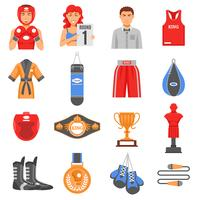 Boxing Ammunition Flat Color Icons Set