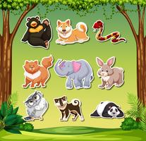 Set of animal sticker pack