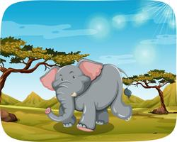 elephant in african scene vector