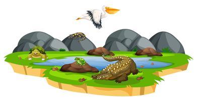 Animals near pond scene