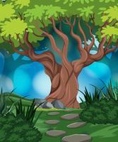 boschi nella scena della natura