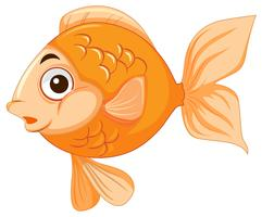A gold fish character