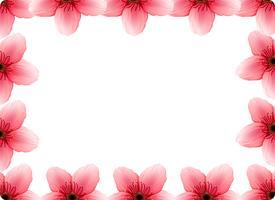 A cherry blossom frame vector