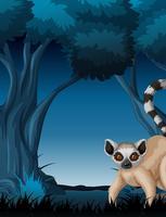 Lemur de pie cerca de un árbol en la noche