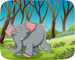 Elephant running in forest