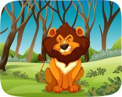 Um leão na floresta