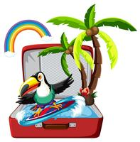 Toucan surfing in suitcase