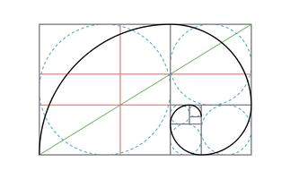 Golden Ratio Vector Design Mall