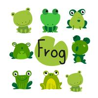 frogs vector collection design