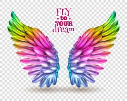 Color Wing Transparent Set vector