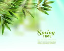 Fondo de hojas de primavera