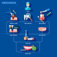 Flat Infographic Dentist vector