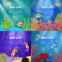 Conjunto de paisagem subaquática