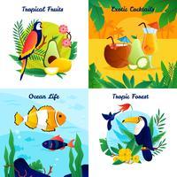 Conjunto de concepto de diseño tropical