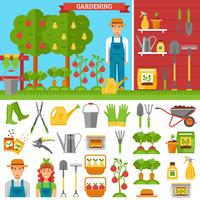 Growing Vegetables And Fruits In Garden vector