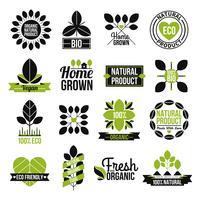 Ensemble d'étiquettes de produits naturels biologiques
