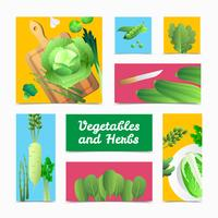 Organic Vegetables Herbs Colorful Headers Poster vector