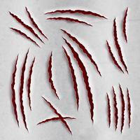 Claw scratches set