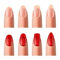 Women Nails Manicure Realistic Images  Set