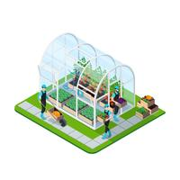 Glass Greenhouse Isometric Template vector