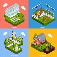 Set di icone di concetto di coltura idroponica